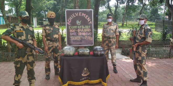 BSF FOILED ATTEPTS OF SMUGGLING – SEIZED  GANJA AND PHENSEDYL